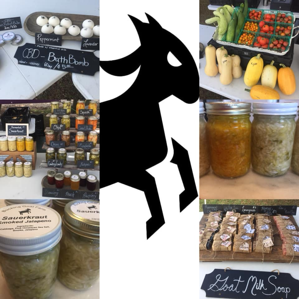 bucking goat soaps and salsa display