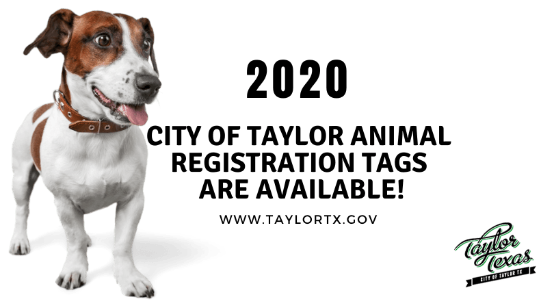 2020 Registration Tags Graphic